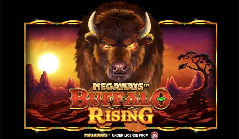 Buffalo Rising Megaways Review