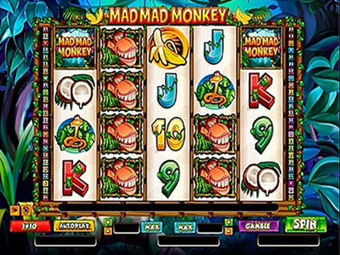 Mad Mad Monkey Slots Game Gameplay