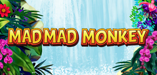 Mad Mad Monkey - SlotsBaby