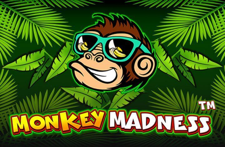 Monkey Madness Review