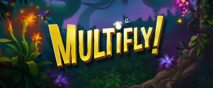 MultiFly Review