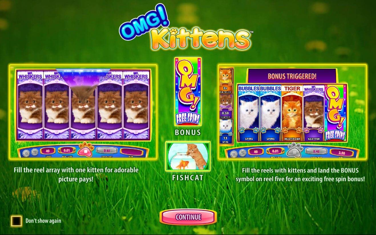 OMG Kittens Bonus