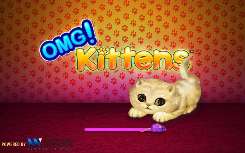 OMG Kittens Review