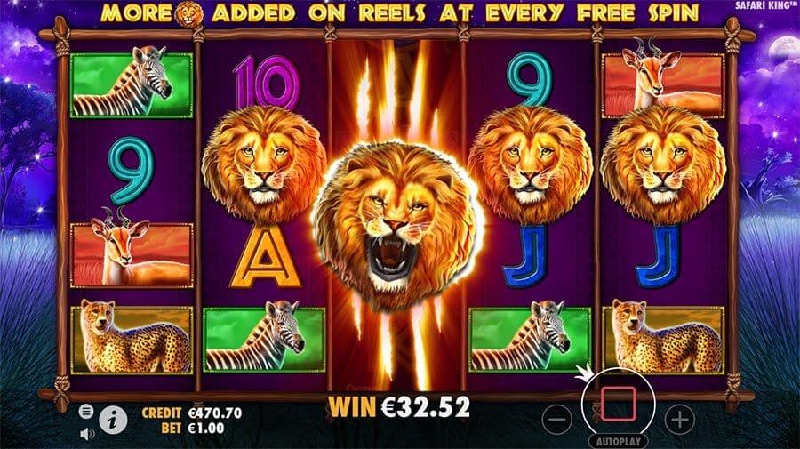 Safari King Slot Bonus