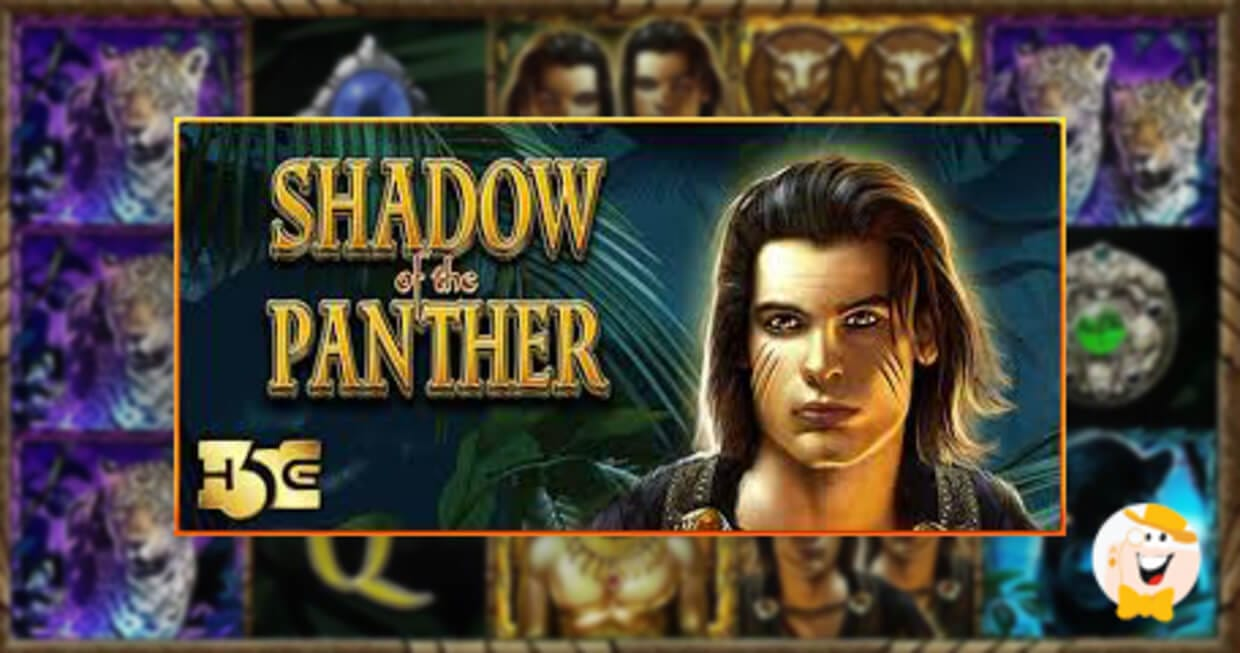 Shadow of the Panther Review