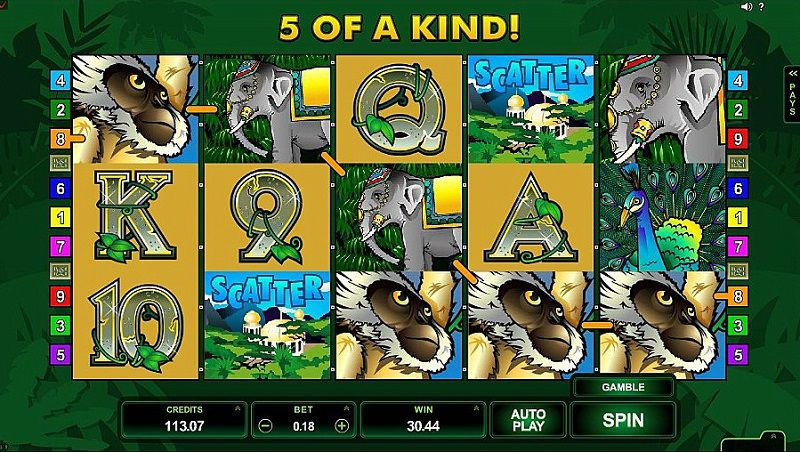 Adventure Palace Slot Game 5 of a Kind