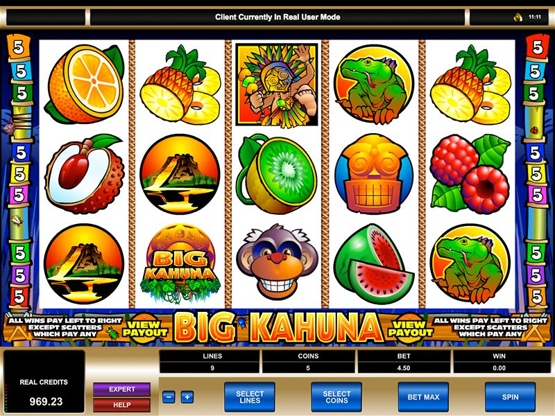 Big Kahuna Slot Game Gameplay