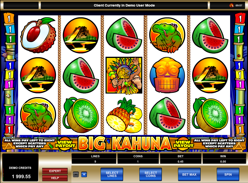 Big Kahuna Slot Game Screenshot