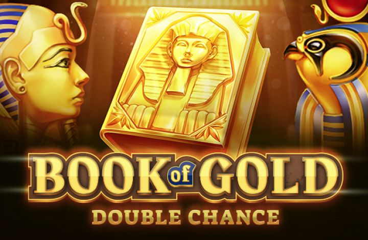 Book of Gold Double Chance Cover Image