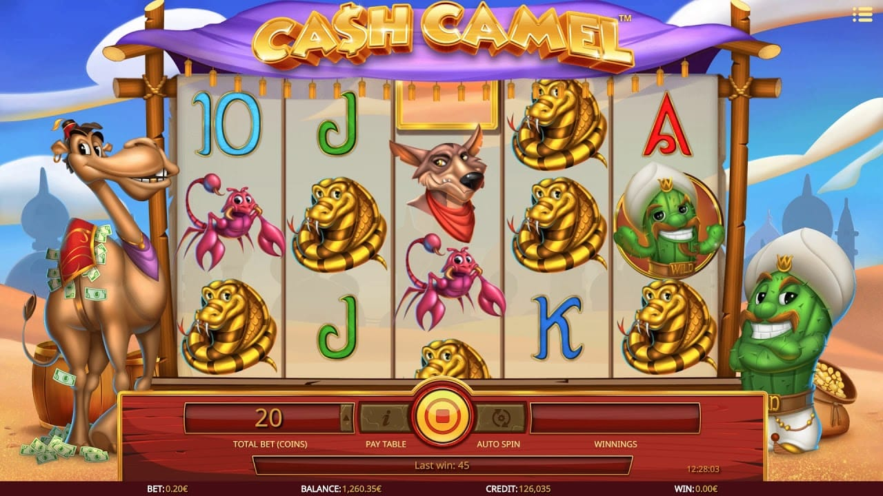 cash camel gameplay