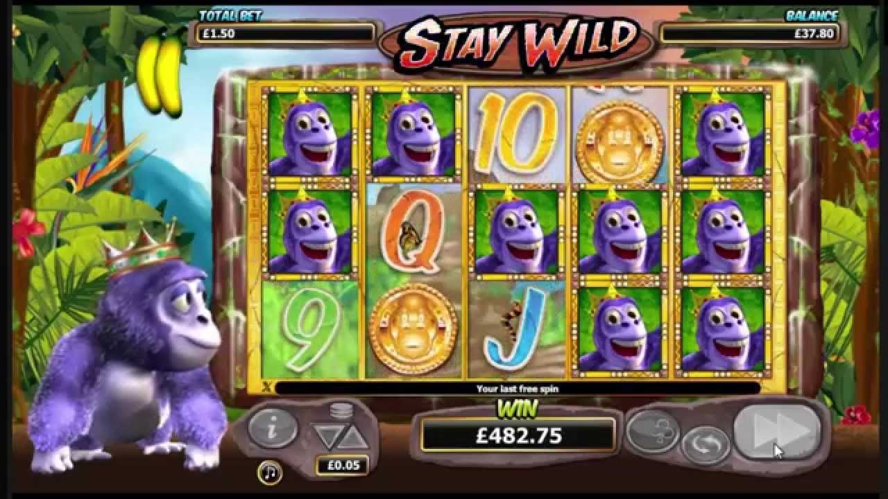 Gorilla Go Wild Screenshot