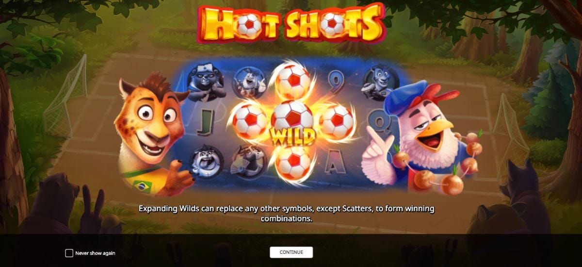 Hot Shots Introduction