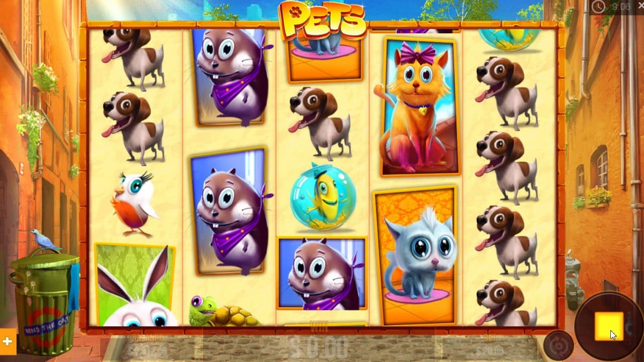 Pets Slot Game Gameplay