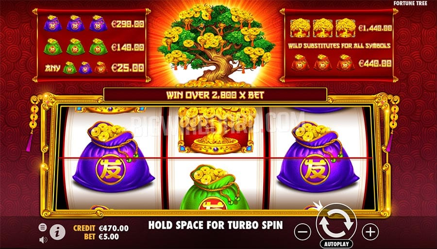 Tree of RIches gameplay casino