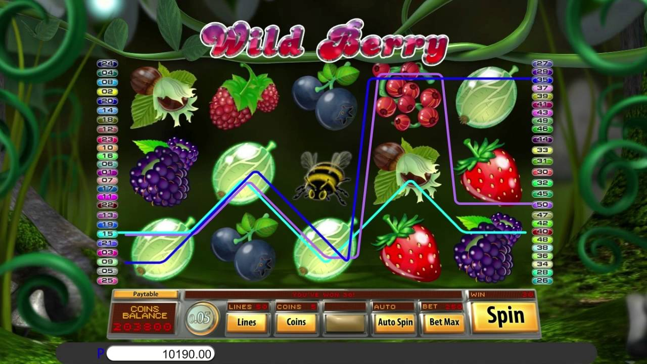 wild berry gameplay 2
